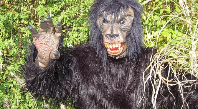 Gorilla dierenpak